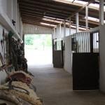 Cabanha OCA - Cavalos Crioulos - Santa Catarina